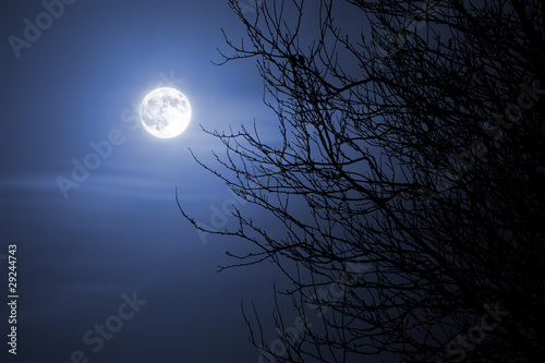 canvas print picture Mond