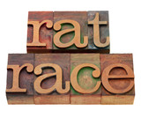 rat race phrase in letterpress type poster