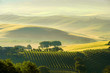 Leinwanddruck Bild - Toskana Huegel  - Tuscany hills 38