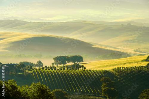 Leinwanddruck Bild Toskana Huegel  - Tuscany hills 38