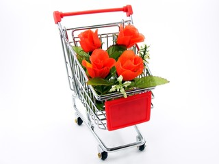 Shopping Trolly with Roses