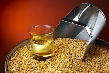 Biofuel Origins