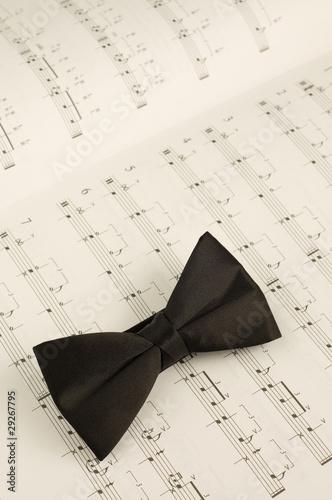 Conductor bow tie