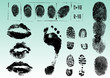 Fingerprints footprints and lips 2