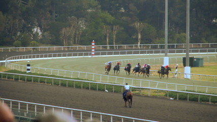 A horse race around the stretch turn of the track.