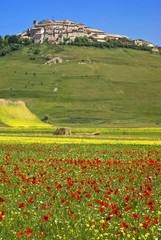Monti  Sibillini: Primavera a Castelluccio di Norcia