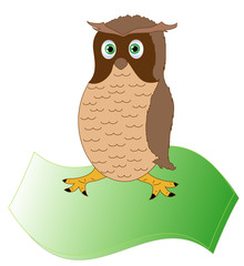 The owl, the bird of wisdom on parchment,vector