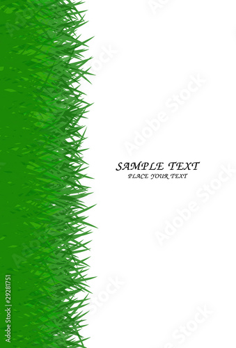 green grass frame with text area copyspace