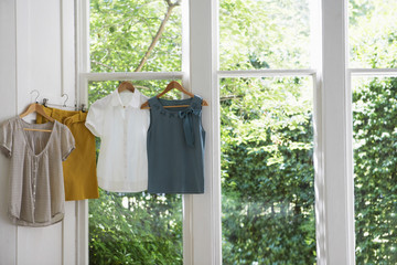 Three blouses and skirt on hangers in domestic window