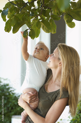 Mother holding child under tree