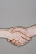 Man and woman shaking hands, close-up on hands