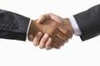 Businessmen Shaking Hands, close-up on hands
