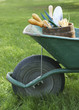 Wheelbarrow with Gardening Tools