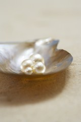 Four pearls in open oyster shell on beach, close up