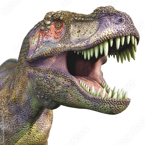 tyrannosaurus big head close up
