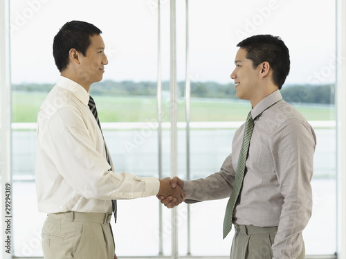 Businessmen standing, Shaking Hands in front of window, profile