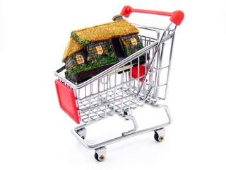 Shopping Trolly with Model Cottage