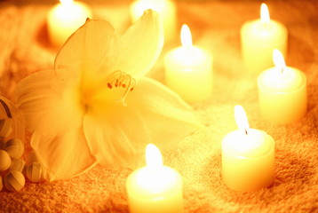 Flower with lit candles