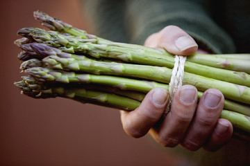 A man holding a bunch of asparagus, close-up