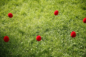 Red eggs on the grass