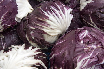 Purple cabbage heads
