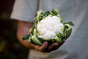 A man holding a cauliflower