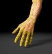 Virus Hand 02