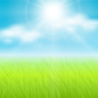 Sunny spring  background, vector.