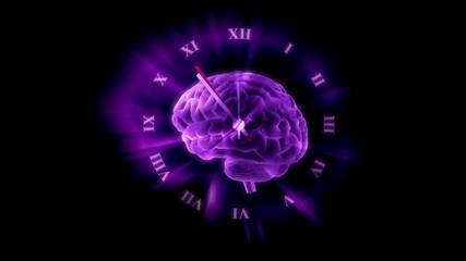 Gehirn - Uhr