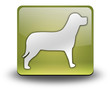 """Yellow 3D Effect Icon """"Dog / K9 / Canine"""""""