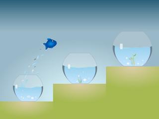 Aquarium Advancement