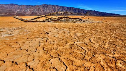 Desert Dry Lakebed