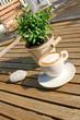 Cappuccino im Sonnenschein gefällig?
