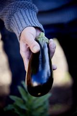 A man holding an aubergine, close-up