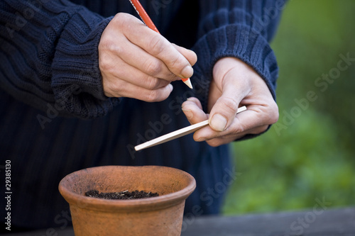 A man labeling a plant