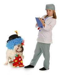 child vet and silly dog