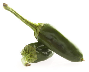green padron pepper