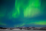 Fototapety Northern Lights (Aurora borealis)