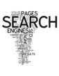 "Word Cloud ""Search Engines / SEO"""
