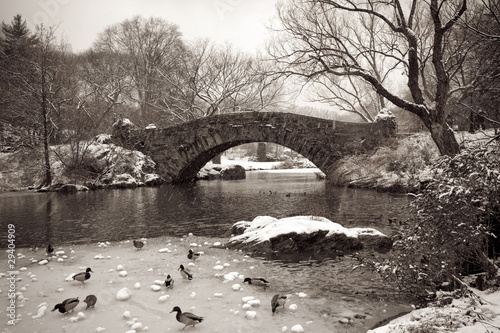 Gapstow bridge - Central Park