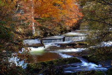 Autumn at Ogwen bank