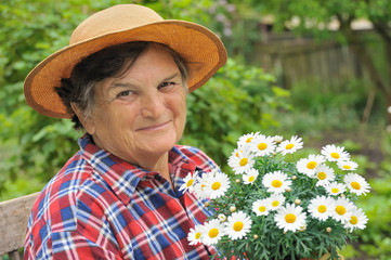 Senior woman gardening - potting Daisy