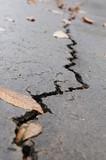 fissure sur la route dû à un tremblement de terre au Japon poster