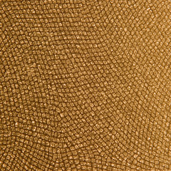 Close up of Reptile skin pattern gold tan color