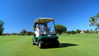 Seniors in Golf Buggy filmed at 60FPS