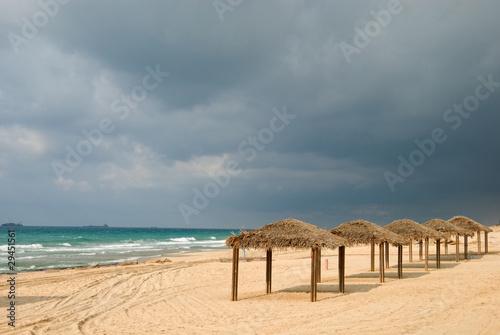 beach - 29451561