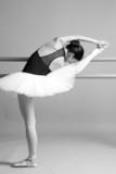 arte della danza