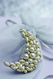 pearl brooch with golden glow poster