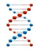 Deoxyribonucleic acid poster