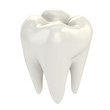 Leinwanddruck Bild - isolated tooth 3d illustration